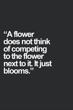 It just blooms.. #competition Food for thought... There is no point worrying about the competition!