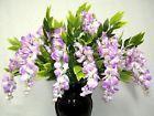 3' LAVENDER Silk Wisteria Bush Artificial Flowers wedding plants arrangements - http://home-garden.goshoppins.com/wedding-supplies/3-lavender-silk-wisteria-bush-artificial-flowers-wedding-plants-arrangements/