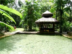 Pousada Jardim da Amazônia - MT  Desde 1997 -  por Raquel Zanchet