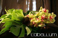 monochromatic green on green flowers  www.labellumflowers.com