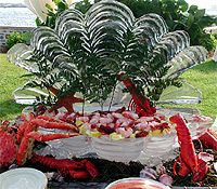 Nautical Design Seafood display, Ice Matters #luau party