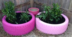 Repurposed tires into garden for my daughter.