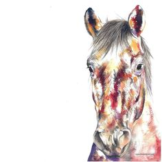Good morning and happy Friday Today this lovely mare will head home soon. Her owner tells me she's quite the diva 😇 Contemporary watercolour commission Paintings Famous, Art Paintings, American Paint Horse, Horse Sketch, Chloe Brown, Horse Artwork, Horse Portrait, Brown Art, Beginner Painting