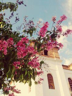 Catedral de Sant'Ana - Goias - Goias - Brasil