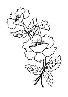 Poppy Flower For Remembrance Day Coloring Page : Color Luna Poppy Coloring Page, Colouring Pages, Anzac Day, Remembrance Day, Online Coloring, Colour Images, Poppies, Embroidery, Poppy Flowers