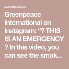 """Greenpeace International on Instagram: """"⚠ THIS IS AN EMERGENCY ⚠  In this video, you can see the smoke traveling across Brazil. The smoke could be seen and felt by people in urban…"""""""
