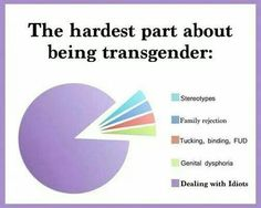 The hardest part about being transgender. for me the dysphoria would be the purple part of the graph. Transgender Tips, Trans Boys, Lgbt Rights, Genderqueer, Lgbt Community, Equality, Lesbian, Instagram, Saga