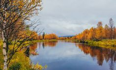 No words needed. Endless Night, Autumn Scenery, Finland, Wilderness, Tourism, Spaces, Landscape, Twitter, Outdoor
