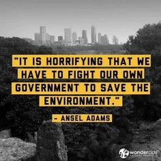 doesn't.the government represents us? so, why do we elect people who don't value planet A?
