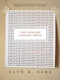 The Center Cannot Hold by Elyn R Saks