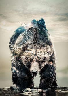 Wolf Tattoo Sleeve, Tattoo Sleeve Designs, Tattoo Designs Men, Sleeve Tattoos, Bear Photos, Bear Pictures, Wilderness Tattoo, Bear Island, Forest Tattoos