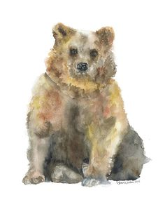Brown Bear Watercolor Painting Giclee Print Fine Art Print 8 x 10 from Susan Windsor. Saved to Watercolors. Watercolor Paintings Of Animals, Bear Watercolor, Painting Prints, Fine Art Prints, Watercolour Painting, Illustrations, Illustration Art, Art D'ours, Black Bear Cub
