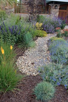 Need some low maintenance garden design ideas? Learn the fundamentals and tips to creating the perfect low mainteance outdoor space in our feature article. Succulent Landscaping, Backyard Landscaping, California Front Yard Landscaping Ideas, Xeriscape California, Dry Riverbed Landscaping, Southern Landscaping, Natural Landscaping, Stone Landscaping, Backyard Designs