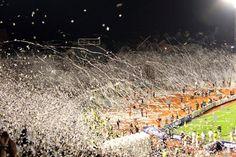 Početak borbe za povratak u TOP 100 Ultras Football, Animation, Belgrade, Football Fans, Bmx, Dolores Park, The 100, Comme, Travel