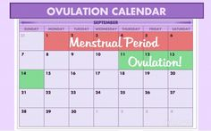 A sample ovulation calendar, calculated using the table above.