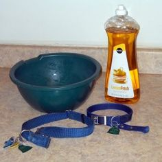 Supplies for washing dog collars