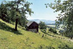 Hut / Chalet in Austria