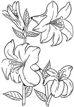 Malvorlagen Blumen   Applikationen- Blüten   Pinterest