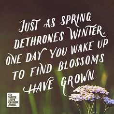 """Just as spring dethrones winter, one day you wake up to find blossoms have grown."" New Blog: ""What Depression is Like"" by Aabye-Gayle D. Francis Favilla"