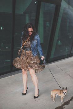 Trendteil Jeansjacke - der zeitlose Modeklassiker kombiniert zu einem Leoprint Kleid, Jeansjacke, Sonnenbrille // Herbstoutfit, Modeblog, www.miss-classy.com #leoprintkleid #jeansjacke #mode #fashionblogger #modetrends Heutiges Outfit, Boss Babe, Fashion Bloggers, Jeans, Outfit Of The Day, Your Style, Classy, Fashion Outfits, Life