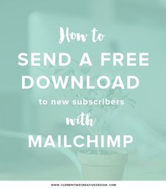 How to send a free download automatically in mailchimp || Clementine Creative