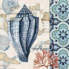 Trade Wind Conch Print by Jennifer Brinley at Art.com
