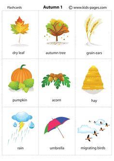 Autumn_autunno