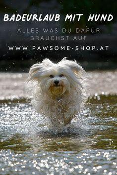Es gibt nicht schöneres, als mit unseren Lieblingen Zeit in der Natur zu verbringen. Dabei darf die richtige Ausrüstung natürlich nicht fehlen. Auf unserer Website findest du nachhaltiges und natürliches Hundezubehör für dein Abenteuer mit Vierbeiner. Badeurlaub mit Hund   Schwimmen   Wandern mit Hund   Urlaub mit Hund   Hundezubehör   Pawsome Dogs, Animals, Dog Accessories, Dog Leash, Swimming, Sustainability, Adventure, Hiking, Animales
