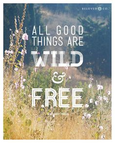 All Good Things Are Wild and Free 8x10 Print by Beloved & Co, $18.00
