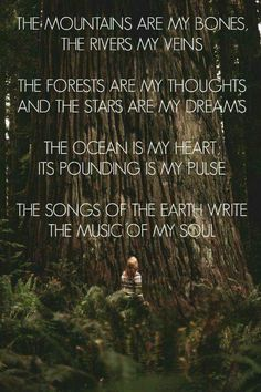 nature quotes The mountains are my bones, the rivers my veins. The forests are my thoughts and the stars are my dreams. The ocean is my heart, its pounding is my pulse. The songs of the earth write the music of my soul. Great Quotes, Quotes To Live By, Me Quotes, Beauty Quotes, Music Quotes, Super Quotes, Crush Quotes, Qoutes, Dr Seuss
