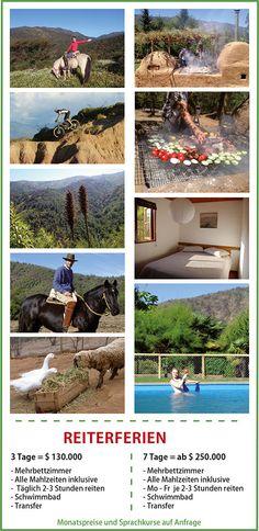 Reiten, Chile, Pferde, Urlaub, Wanderreiten, Reittherapie, Ferienhäuser, Reiterferien, Sprachkurse