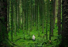 Randonnée dans les Highlands d'Écosse