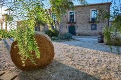 Agriturismo Conte Ruggero Regalbuto Featuring free WiFi, a restaurant and a barbecue, Agriturismo Conte Ruggero offers pet-friendly accommodation in Centuripe, 36 km from Catania. Free private parking is available on site.