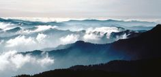 The Smoky Mountains - The wispy, smoke-like fog that hangs over the Smoky Mountains comes from rain and evaporation from trees. On the high peaks of the Smokies, an average of 85 inches of rain falls each year, qualifying these upper elevation areas as temperate rain forests.
