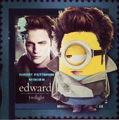Twilight Minion hahahaha,!!!!!!!