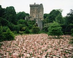NAKED SEA PHOTOGRAPHY BY SPENCER TUNICK