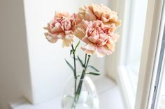 Dusty pink carnations/Sara K Dusty Pink, Pale Pink, Pink Carnations, Scandinavian Style, Planting Flowers, Glass Vase, Girly, Lazy Days, Pretty