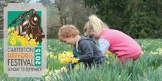 Image result for daffodil day carterton
