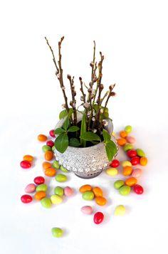 Muccis färgglada mandelkonfektyr av mandeltypen Toritto är krispiga och härligt nötiga och smaken kompletteras av den täckande vita chokladen med olika fruktsmaker. Läs mer om dem här: http://beriksson.net/vara-varumarken/mucci  #Mucci #påsk #konfektyr #choklad #Beriksson http://beriksson.net/vara-varumarken/mucci