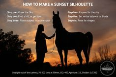 Photo Tip: How to Make a Sunset Silhouette - Shelley Paulson Photography Blog - Minnesota Equine, Wedding and Portrait Photographer