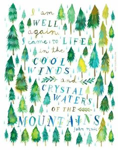 New Nature Quotes John Muir Peace Ideas Pretty Words, Beautiful Words, John Muir Quotes, Mountain Quotes, Daisy, Forest Painting, Acrylic Artwork, Watercolor Walls, Watercolor Trees
