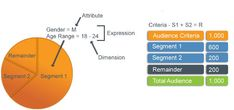 Audiences and Segments
