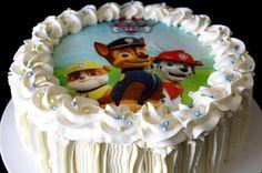 Kakkuviikarin vispailuja!: Ryhmä Hau- kakku