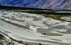 The surreal Sand Dunes, Nubra Valley