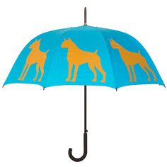 Boxer Umbrella...got this for my bday and love it!!!