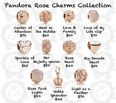 Exciting news tonight as the popular Pandora Rose Collection has been confirmed to make an official debut! It's no secret what these designs will be as Pandora conducted a test run of the product back in April. Originally Pandora Rose was only sold . Pandora Beads, Pandora Bracelet Charms, Pandora Jewelry, Charm Jewelry, Charm Bracelets, Pandora Bangle, Pandora Pandora, Pandora Rose Gold, Pandora Collection