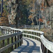 Free & Cheap Things to Do in Augusta, GA