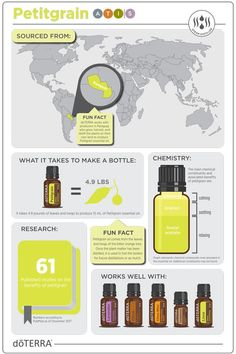 "Petitgrain, where is it sourced from? What does it take to make a bottle? Chemistry of the oil Research about the oil Fun Fact Other oils does it work well with. Commonly known as ""men's lavender"""