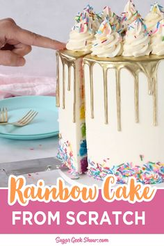 Not only is this rainbow cake beautiful and colorful, but it also tastes really delicious. Made from my famous white velvet cake recipe and easy buttercream, this rainbow cake makes the perfect birthday or special occasion cake! Homemade Birthday Cakes, Beautiful Birthday Cakes, Birthday Cake Video, Birthday Cake Recipes, Neon Birthday Cakes, Rainbow Birthday Decorations, Colorful Birthday Cake, 14th Birthday Cakes, Cake Tutorial