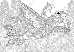 Adult Coloring Page Sea Turtle. Zentangle by ColoringPageExpress